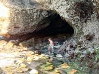 Tide pooling at Impossibles.
